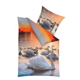 Mako-Satin-Bettwäsche Swan Sonne (135x200)